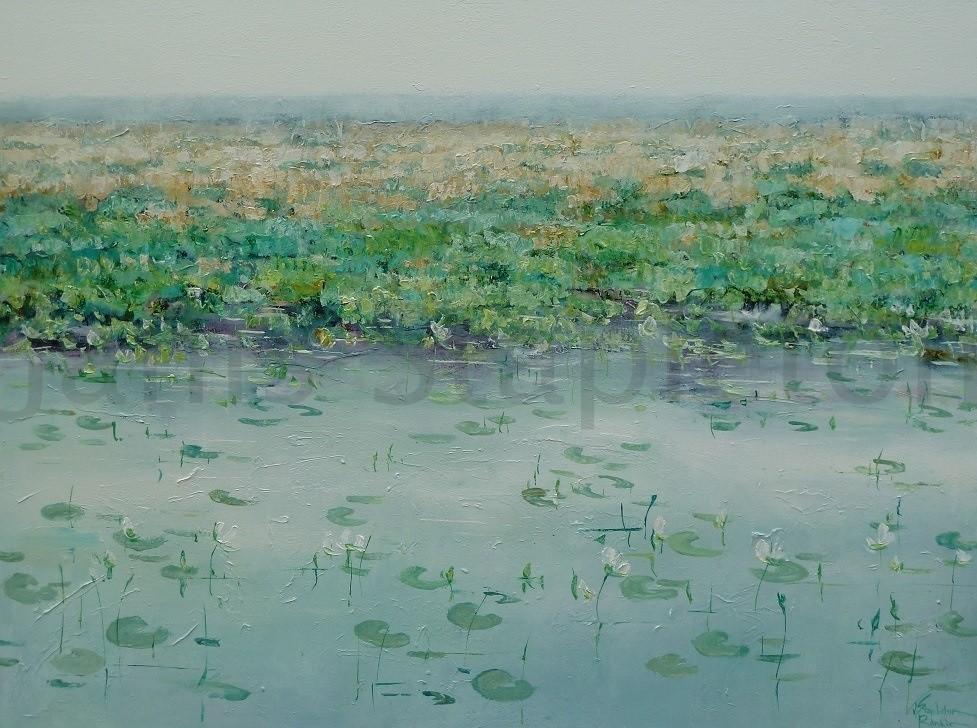 Billabong Mist Lilies