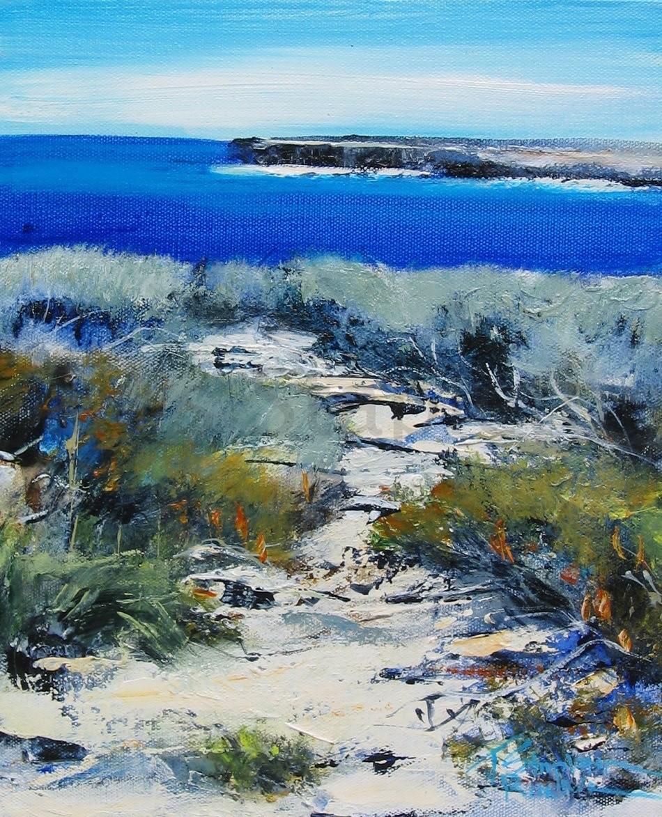 Coastal Banksias I