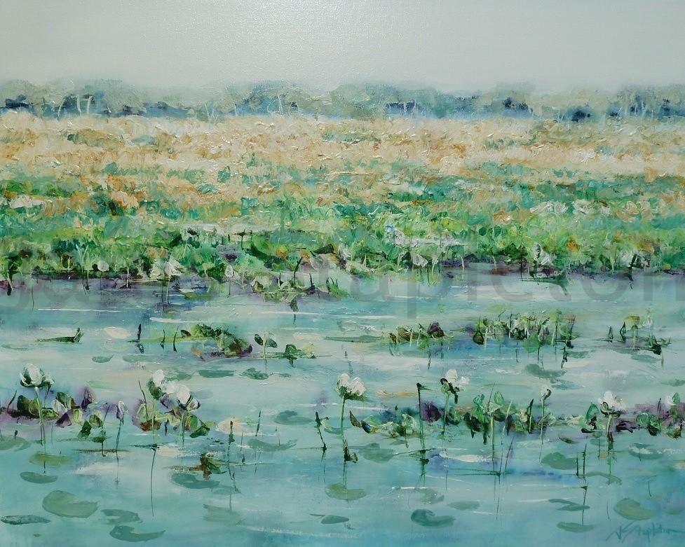 White Lilies Yellow Waters Billabong